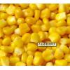 求购玉米,小麦等饲料原料