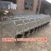 母猪限位栏尺寸 母猪保胎栏价格  十个猪位的定位栏厂家批发
