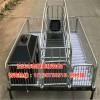 单体猪产床的价格是多少 猪产床配套设备厂家报价泊头宏基