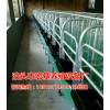 带复合漏粪地板的限位栏价格是多少 十个位的限位栏生产厂家
